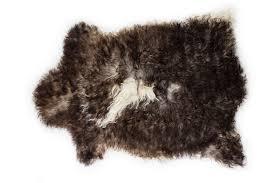 ethically sourced premium quality supple wool sheepskin rug natural soft wool genuine sheepskin pelt deep brown white 2 2 x3 2