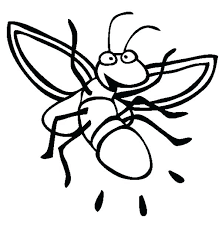 firefly coloring page firefly coloring page the very lonely firefly colouring page firefly coloring page here