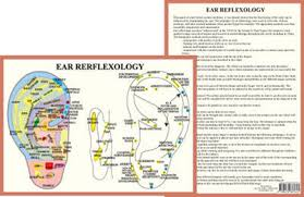 Cranial Reflexology Chart Ear Reflexology A4