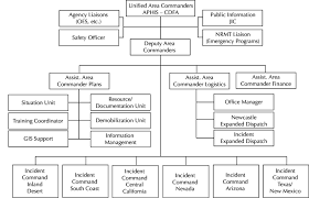 Organizational Structure Of Task Force Download Scientific