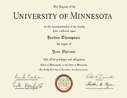 University Of Minnesota Twin Cities Dimensions Diploma Frame In