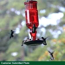 red glass hummingbird feeder red glass hummingbird feeder perky red antique bottle glass hummingbird feeder red