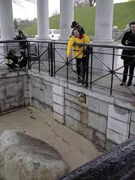 「Plymouth Rock」の画像検索結果