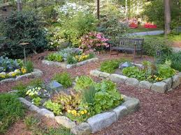 parterre vegetable garden design parterre vegetable garden design elegant garden design backyard ve able garden ideas my beautiful of parterre vegetable