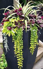 the way to start gardening for beginners is using planters how to tips on where to place planters what plants to look for and how to arrange them
