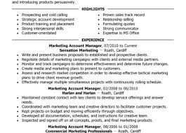 Key Account Manager Resume Resume Incredible Key Account Manager Resume Objective Gorgeous 17