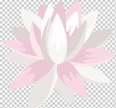 Lotus Flower Color Chart Petal Flowering Plant Png Clipart Cartoon Color Chart