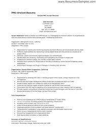 ... 14 best Sample of professional resumes images on Pinterest - resume  analyst ...