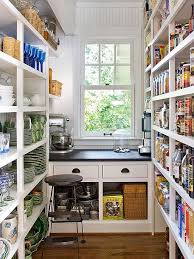 Awesome Storage Solutions For Kitchen Pantry 51 Pictures Of Kitchen Pantry  Designs Ideas Butler Pantry