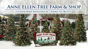 christmas tree farmheader_graphic - Christmas Tree Farms Colorado