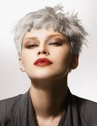 Coiffure Cheveux Gris Beau Coiffure Femme Cheveux Longs Gris