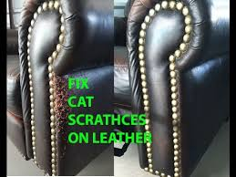 easy cat scratch leather repair you