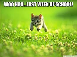 Image result for last week of school meme