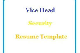 Senior Accountant Resume Sample - Resumeliftcom