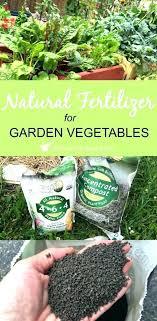 Vegetable Garden Fertilizer Chart Best Fertilizer For Garden Rootsistem Com