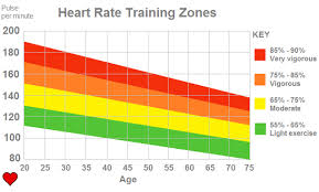 Understanding Your Heart Rate For Fat Burning Fat Burning Zone