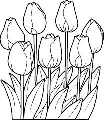 Small Picture Tulips is One of Spring Flower Coloring Page Color Luna