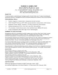 Resume Sample For It Manager Software Development Best Quality
