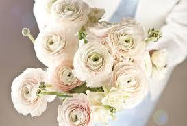 bouquet of ranunuculus