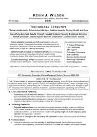 IT Director & CIO Sample Resume; Executive resume writer, executive resume  writing.