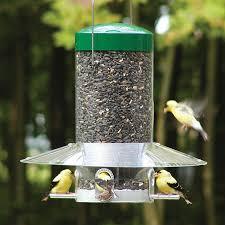 birds choice steel squirrel resistant 1 2 gallon bird feeder