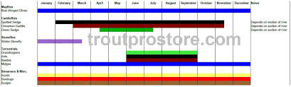 Insect Hatch Chart Uk Best Image Home In The Word