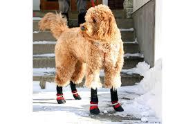 Fleeced Lined Muttluks Dog Boots Muttluks Cold Maintenance