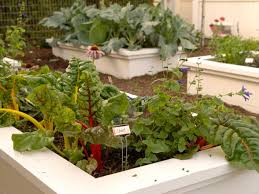 how to make a raised vegetable garden. Think Big. There\u0027s No Limit To How Large A Raised Garden Make Vegetable N