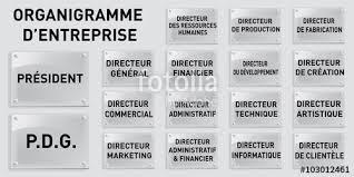 """Résultat de recherche d'images pour """"organigramme direction marketing"""""""