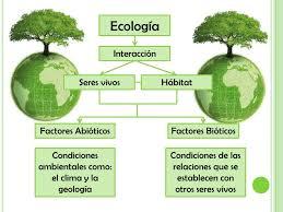 Recología