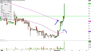 Imnp Stock Chart Immune Pharma Cmn Imnp Stock Chart Technical Analysis For 05 31 16