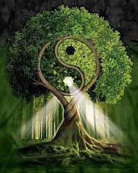 Integrating Your Own Power – Inspirations from the Spirit of the Trees and  the Elves – The Poetry of Your Soul
