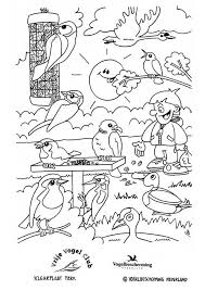 Coloring Page Birds In The Park Img 8870 Images