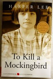 to kill a mockingbird book discussion questions ninety five great book review websites