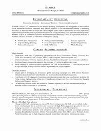 14 New Basic Resume Template Word Resume Sample Template And