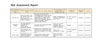 Risk Assessment Report Risk assessment report ANNA 1