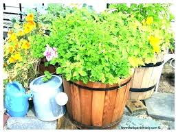 large deck planters outdoor herb garden planter ideas plant holder decorating for a herbs indoors