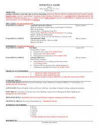 Download American Resume Haadyaooverbayresort Com