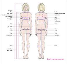 Body Measurement Chart Stock Photos And Images 123rf