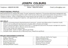Business Analyst Resume Sample Beauteous Business Analyst CV Sample