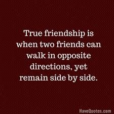 Funny Quotes About Love And Friendship Fascinating True friendship is when two friends can walk in opposite directions