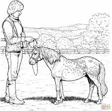 Small Picture Mare Horse And Filly Coloring Page Free Printable Horses Pages