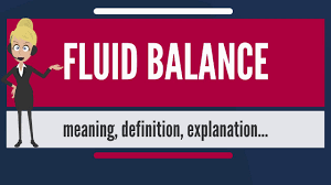 Fluid Balance Chart Definition What Is Fluid Balance What Does Fluid Balance Mean Fluid Balance Meaning Explanation