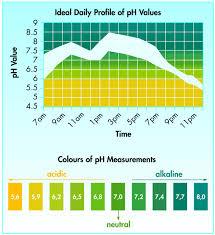 Ph Level Chart For Urine Urine Ph Balance In The Human Body