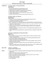 Counseling Resume Examples Drug Counselor Resume Samples Velvet Jobs 10