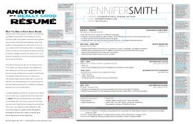 Examples Of Really Good Resumes Examples Of Resumes