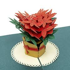 Poinsettia Card Paper Love Poinsettia Flowers Pop Up Card 3d Popup Greeting Cards For Christmas Birthday Graduation Thank You Any Occasion