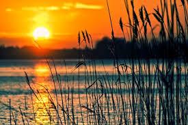 Bildergebnis für sceneries download free