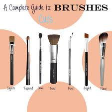 face brushes uses. guide to brushes 2 face brushes uses