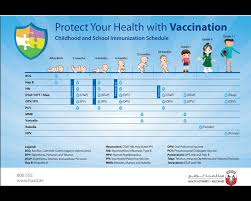 Child Immunisation Chart Childrens Health The Official Portal Of The Uae Government